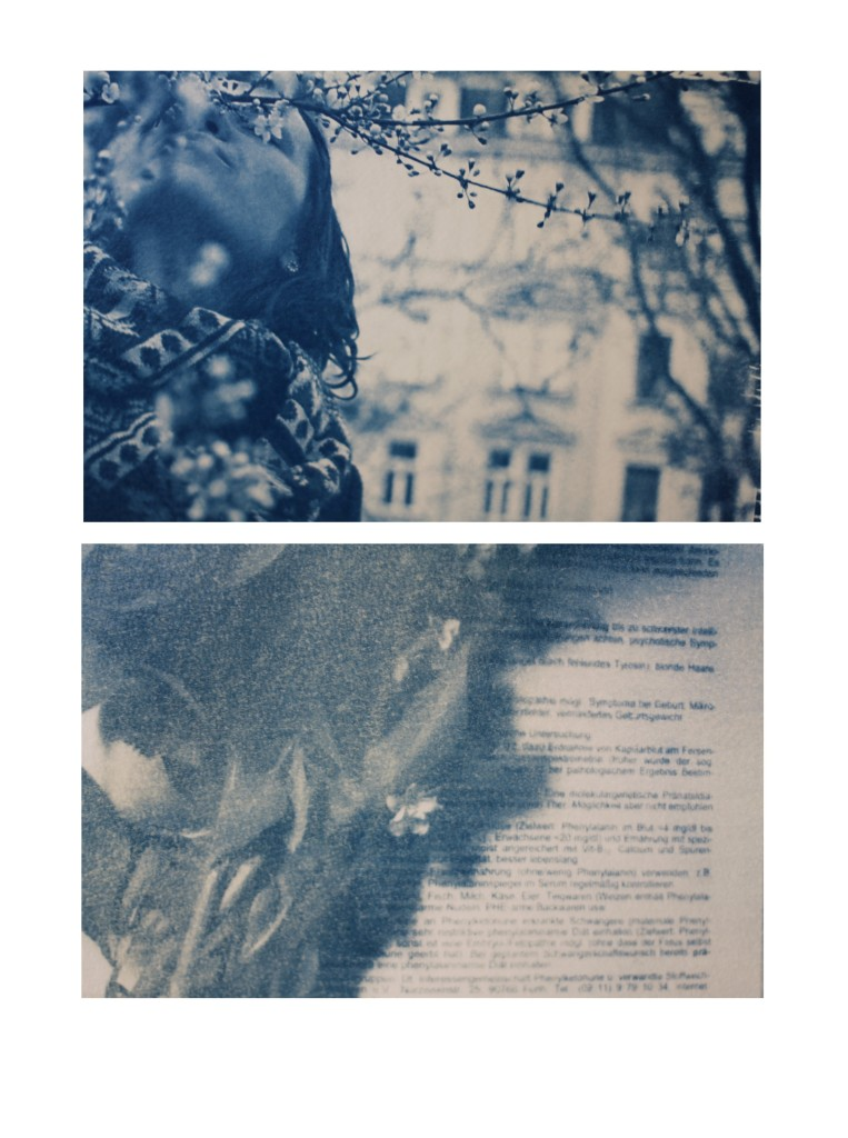 blue dyptych iii
